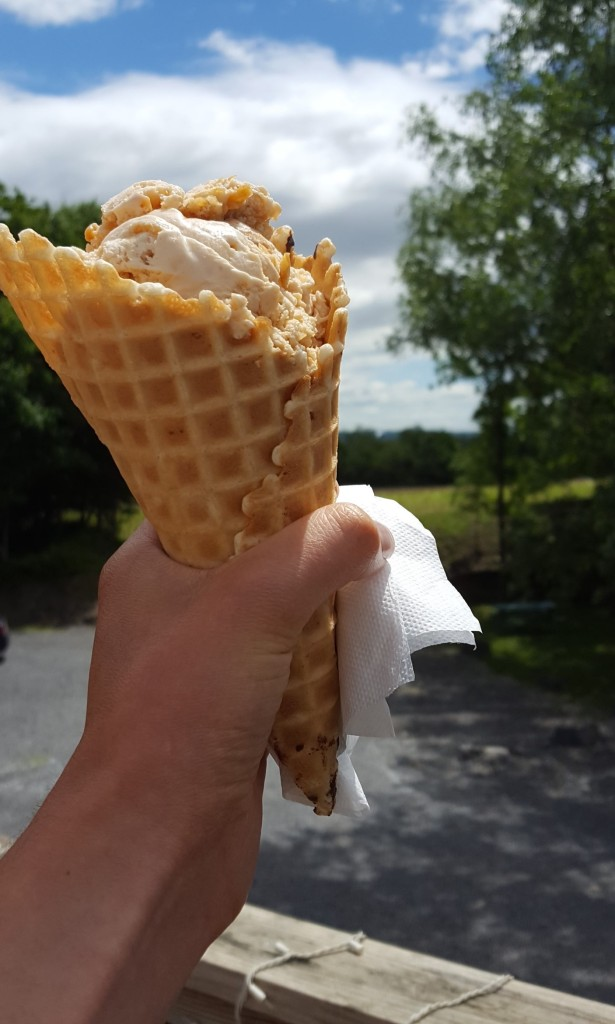 Cayuga Lake Creamery; The Finger Lakes