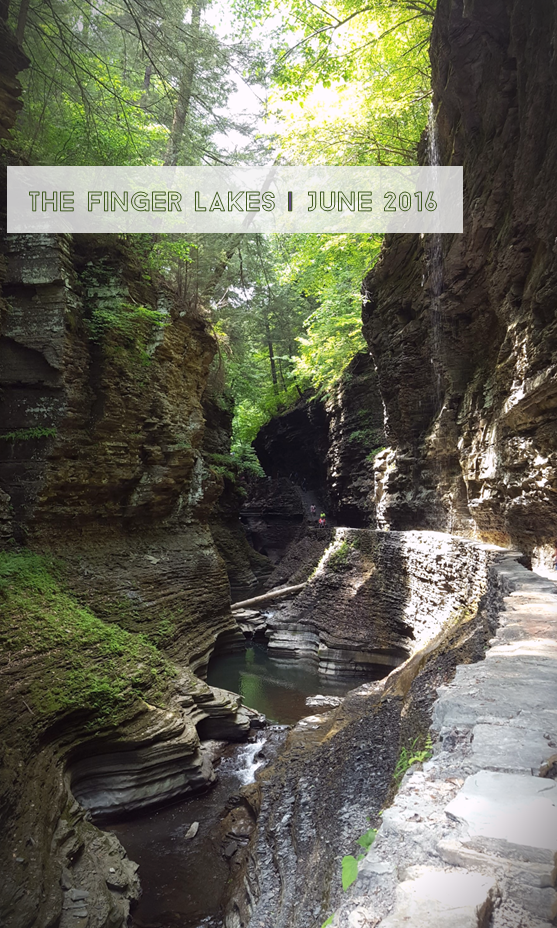 Watkins Glen State Park; The Finger Lakes