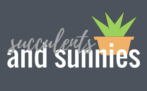 Succulents and Sunnies | Taylor K Flynn | Logo