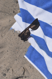 Beach Day Summer Essentials | Succulents and Sunnies