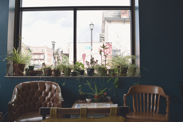 Buffalo Girls Day Out | Locals Guide | Succulents and Sunnies