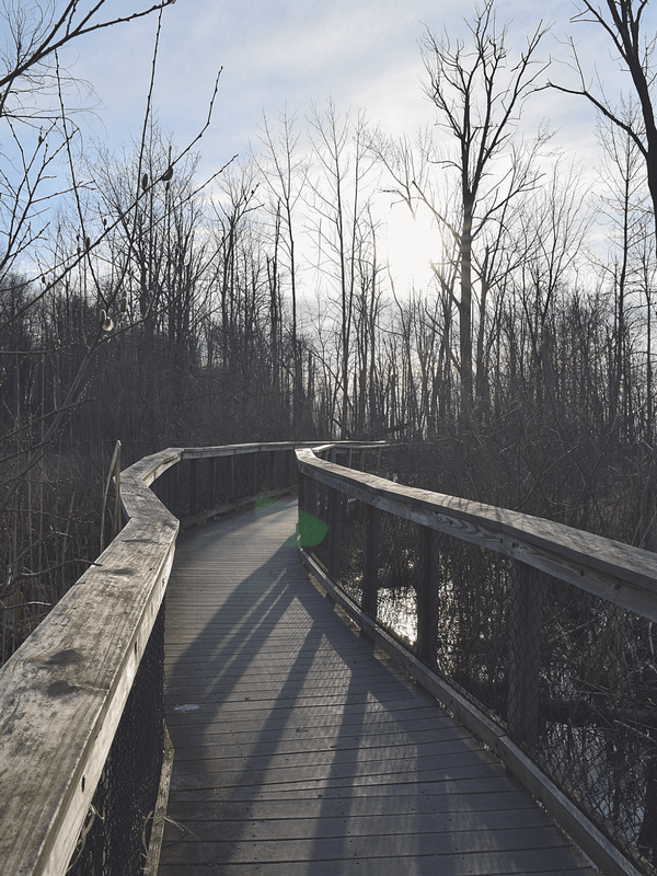 Get Outside in Buffalo, NY | Iroquois National Wildlife Refuge