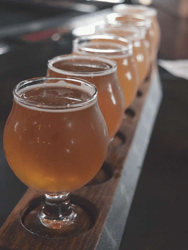 Flight at Steelbound Brewery, Ellicottville, NY