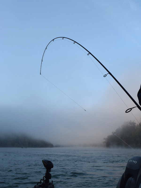 A bent fishing rod as fog rises over Niagara River